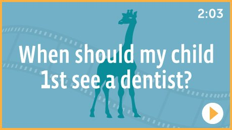 When should my Child see a dentist for the 1st time?
